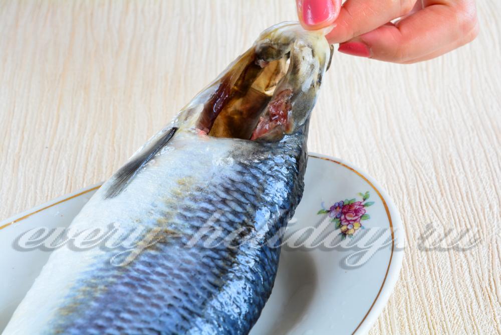Как сделать солёную рыбу