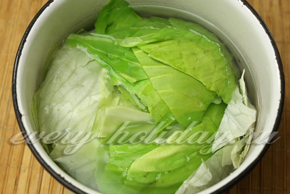 листья капусты кольраби рецепты