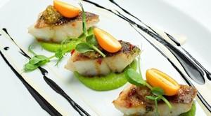 Блюда из судака: рецепты с фото простые и вкусные