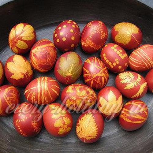 Покрасить яйца с помощью листьев растений