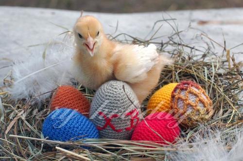 Пасхальные яйца крючком: схемы, мастер класс с пошаговым фото
