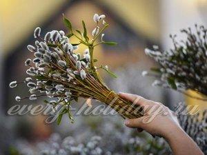 виды вербное воскресенье приметы и заговоры назначению