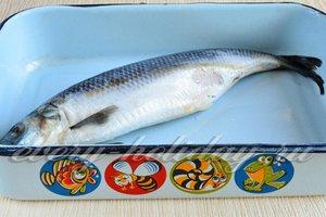 Выкладываю рыбу