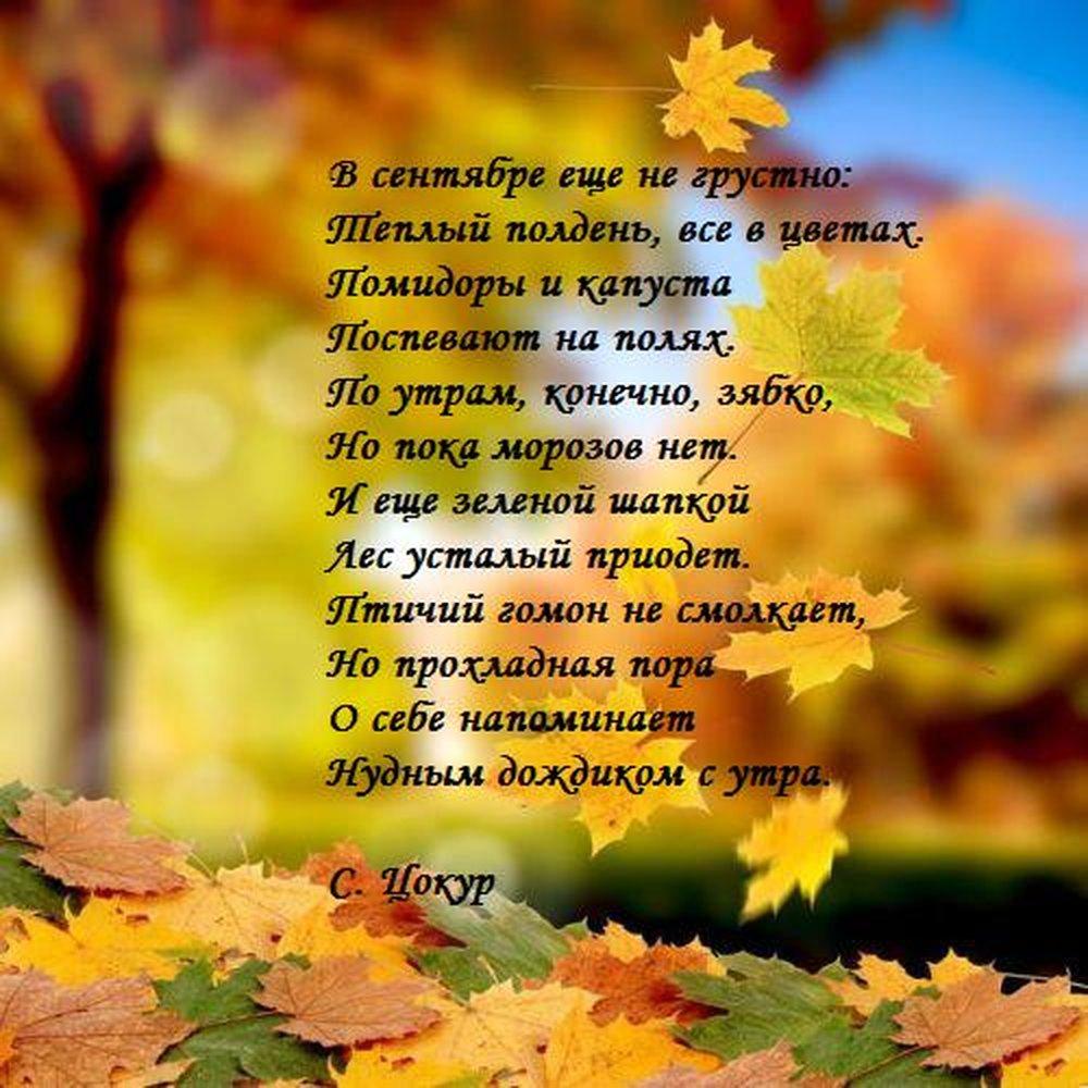 Смешные стихи про осень с картинками, спортивная семья картинки